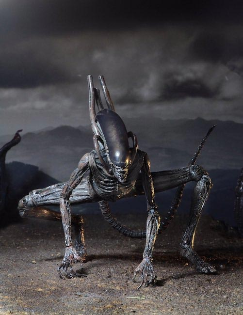 "Alien Covenant Xenomorph 7"" Scale Action Figure"