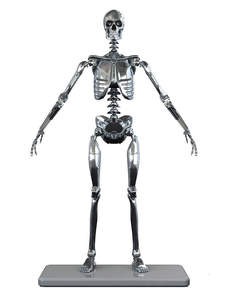 Mark I Stainless Steel Endoskeleton 1/6 Scale Figure by Molecule8