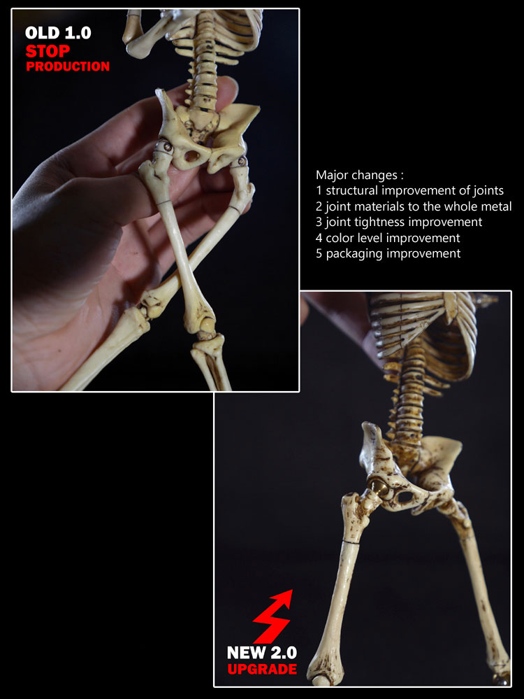 Skeleton Body Movable 1/6 Scale Figure 2 0 with Metal Joints