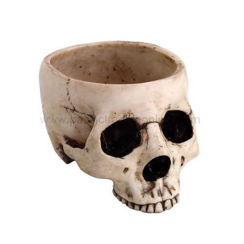 Skull Bowl Bone Color