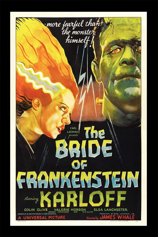 Bride of Frankenstein Softcover Book by Philip Bailey