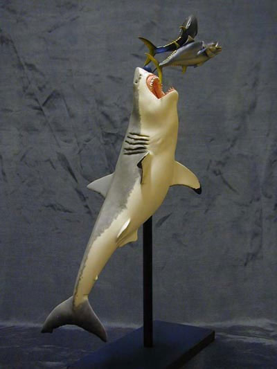 Jaws Great White Shark With Tuna Model Kit
