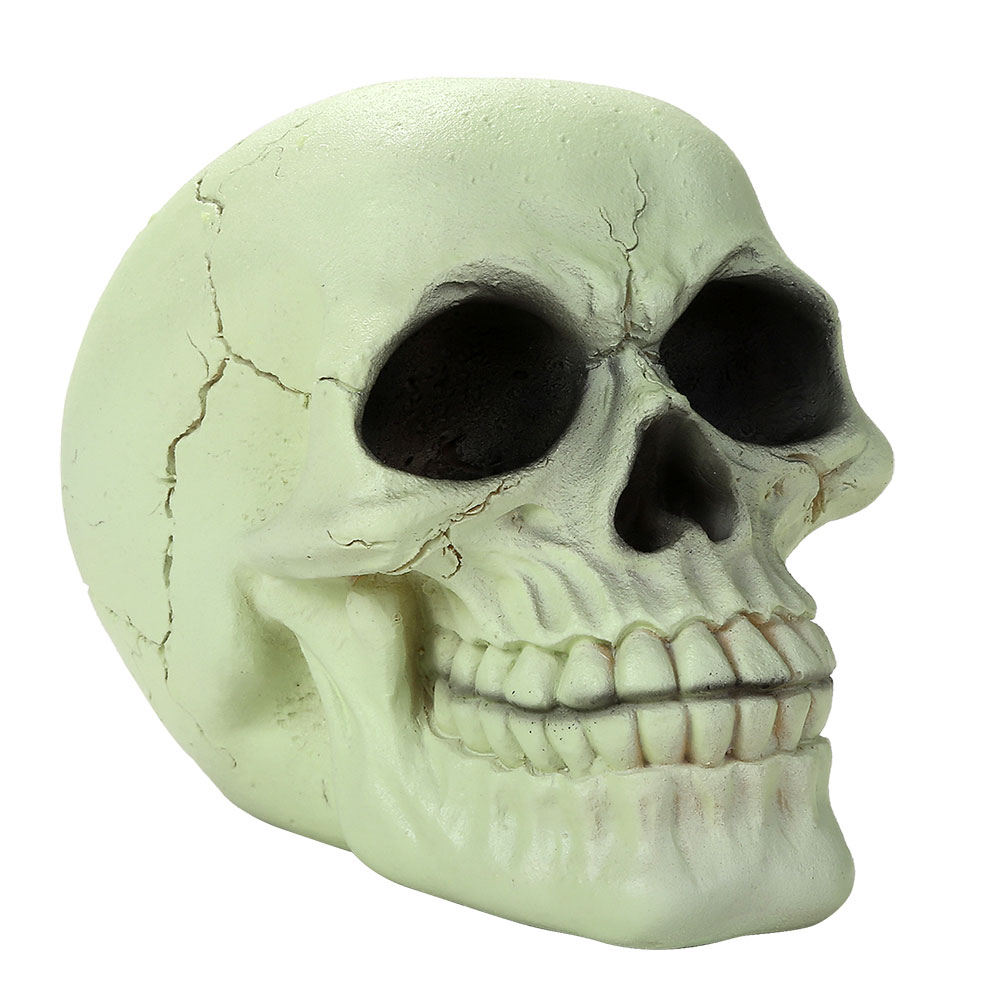 Glow In The Dark 1/2 Scale Skull