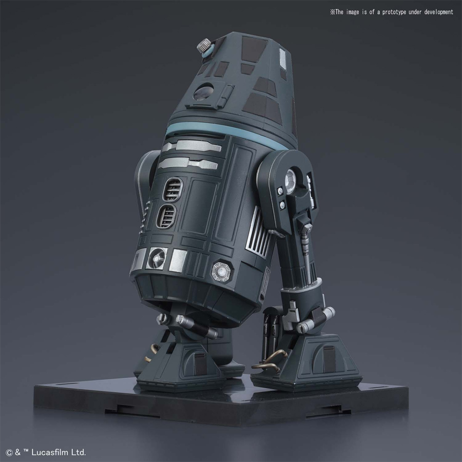 Star Wars Droid Collection R4-I9 1/12 Scale Model Kit with R2-D2 Accessory by Bandai