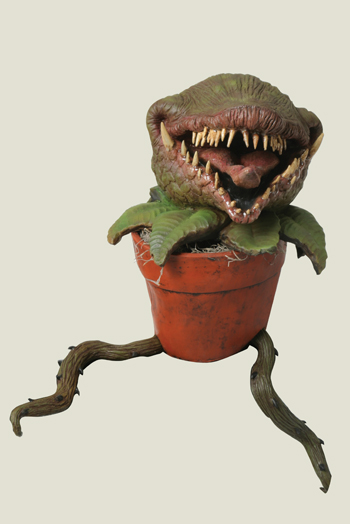 Little Shop Of Horrors Man Eating Plant