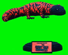 Giant Gila Monster Model Kit